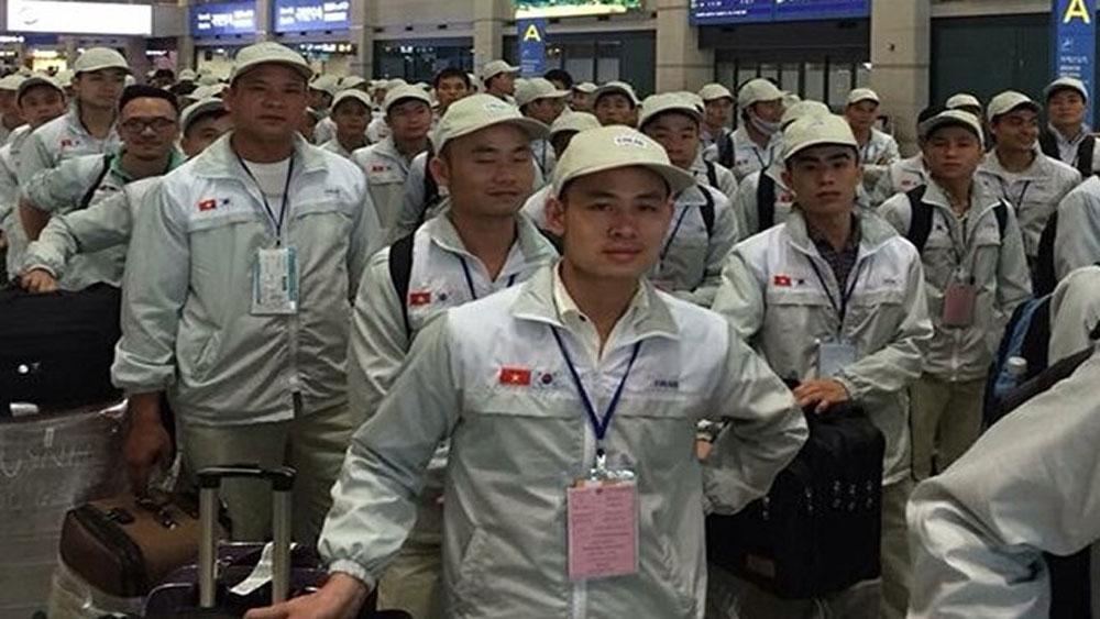 Có hơn 4.000 lao động Việt Nam trong vùng dịch Covid-19 ở Hàn Quốc